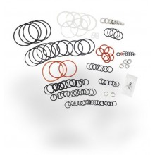 Spectra - Clark Pump Seal and O Ring Kit